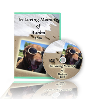 pet slide show montage videos, custom photo dvd, memorial, Powerpoint templates